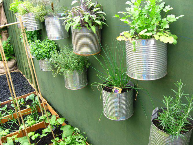 agriculture urbaine faire son potager sur balcon en 5 tapes et 0 le billet d veloppement. Black Bedroom Furniture Sets. Home Design Ideas