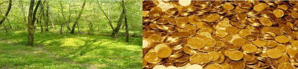 nature et argent