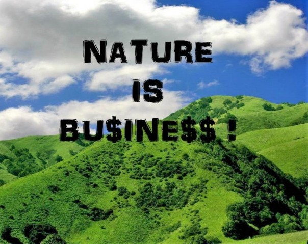 nature is business