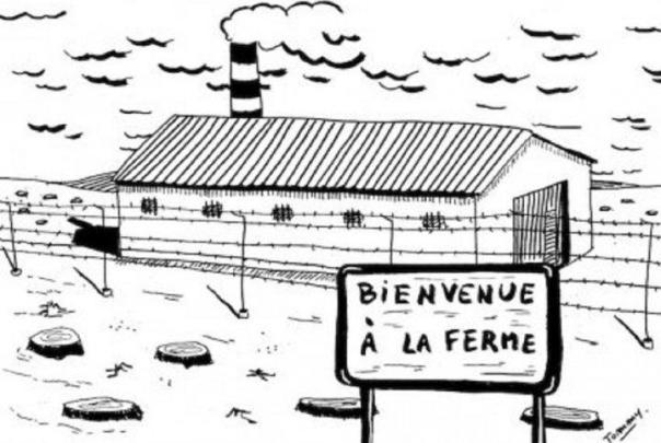 Image territoiredavenir.fr
